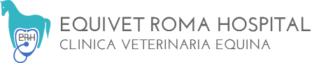 Electroporator Onkodisruptor equivet roma hospital logo