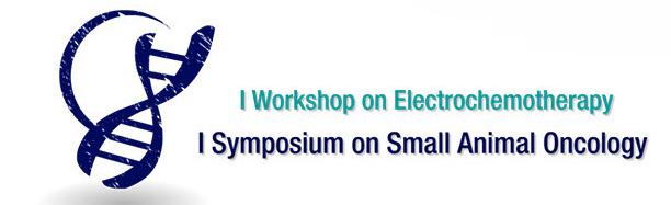 Electroporator Onkodisruptor workshop