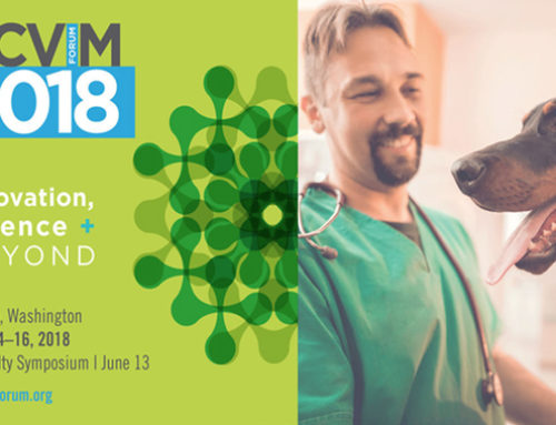 Veterinary Oncology Research at the 2018 ACVIM forum