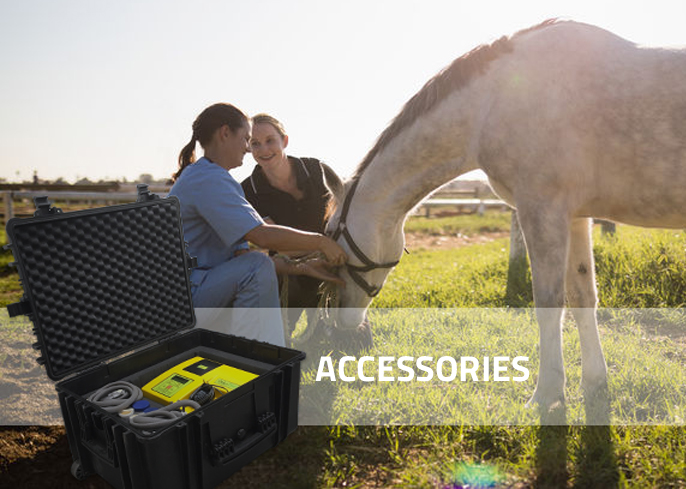 Veterinarian with onkodisruptor in Horse veterinary Electrochemotherapy